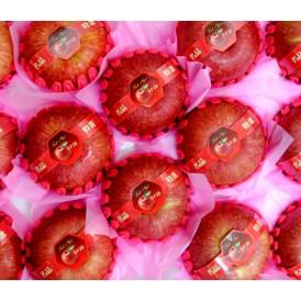 고지대산사과 (8~9과)